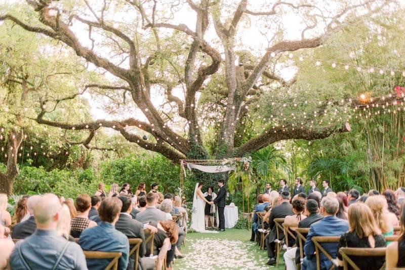 wedding in progress under large tree