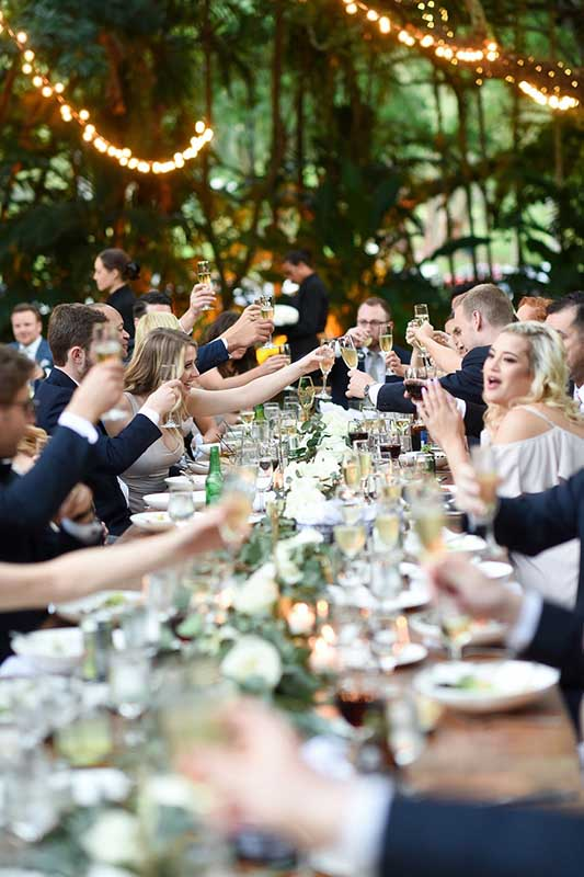 guests toasting to a beautiful wedding
